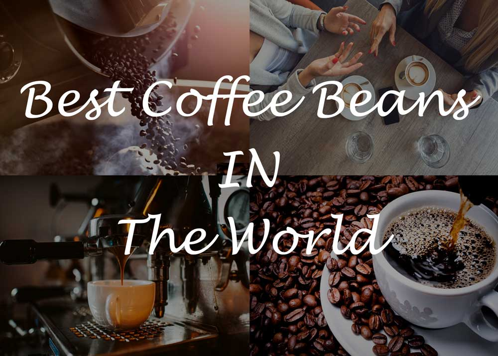 Top 10 Best Coffee Beans In The World [Reviewed October 2019]