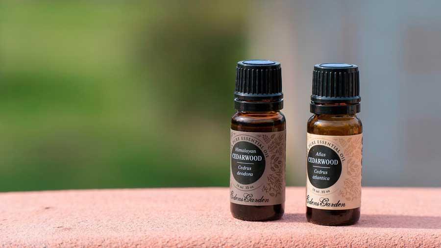 Edens-Garden-Essentials-Oils